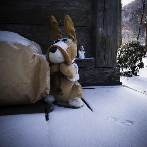 Temple Stuffed Rabbit, Inari Shrine Fox and Snow Tracks, Yakushi Onsen (Hot Spring)
