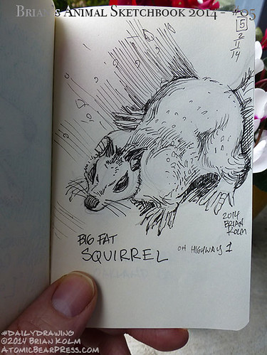 02-11-2014 #dailydrawing #animals big fat squirrel