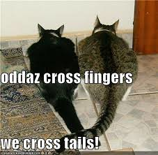 crossed tails