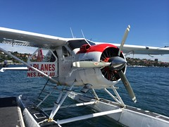 aviation, airplane, propeller driven aircraft, wing, vehicle, light aircraft, seaplane, ultralight aviation, aircraft engine,