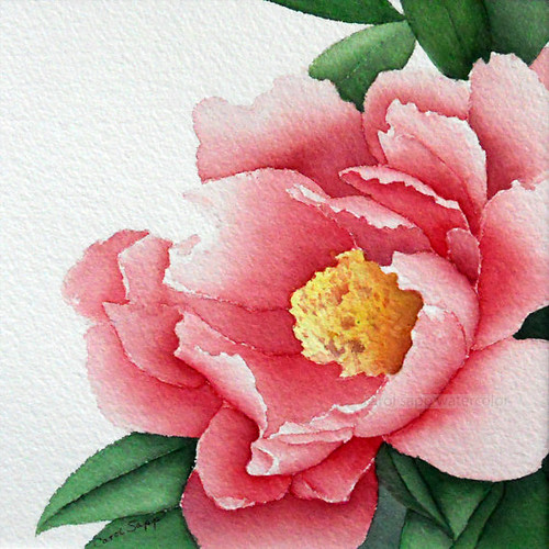 Watercolor-Print-Rose-Peony