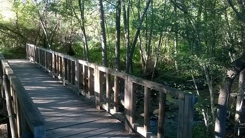 puente intermedio
