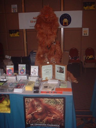 Display for the Orangutan Foundation