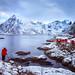 Primary | Hamnøy, Lofoten, Norway by v on life