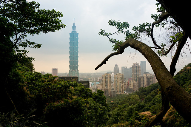 Taipei 101: Through the trees