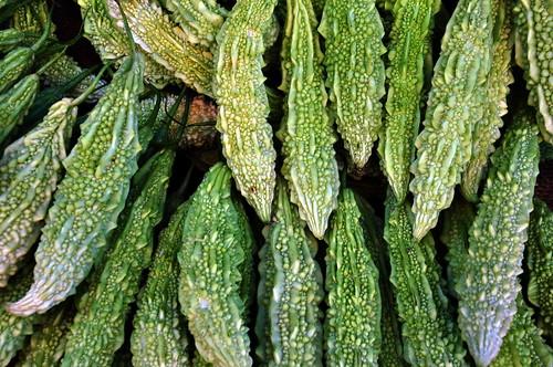 India - Karnataka - Mysore - Devaraja Market - Bitter Melon - 257