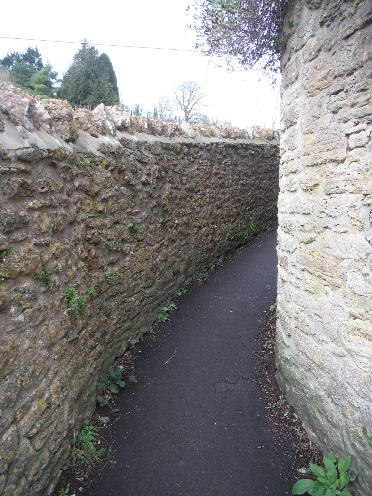 Mill Lane, Bruton SWC Walk 284 Bruton Circular (via Hauser & Wirth Somerset) or from Castle Cary