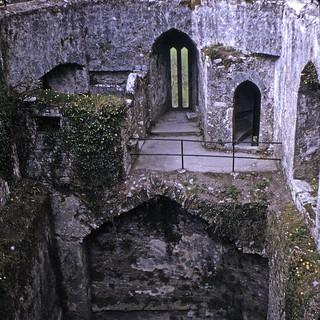 Found Photo Ireland 19720502 Blarney Castle 1