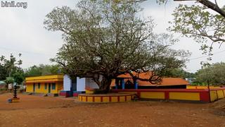 Pathirakkottukavu Temple Mundathikode 2