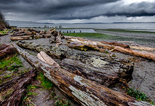 picnicpoint landscape storm clouds pugetsound shoreline beach beachlogs trinterphoto richtrinter pilings rain