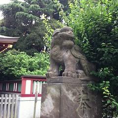 狛犬探訪 蒲田稗田神社 子連れではない ちょっとユーモラスな顔で