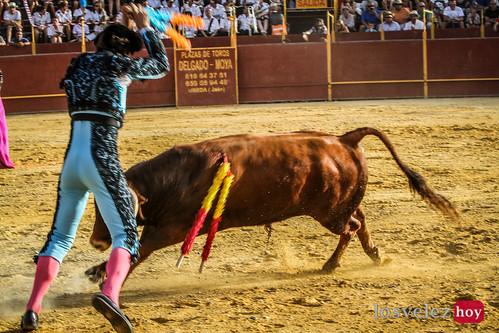 Corrida de Toros de Vélez Rubio