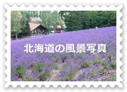 2012hokkaido_topbanner1