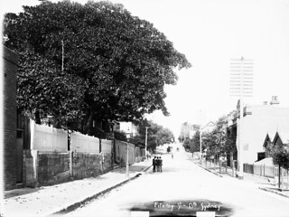 Fitzroy Street, Milsons Point (NSW)