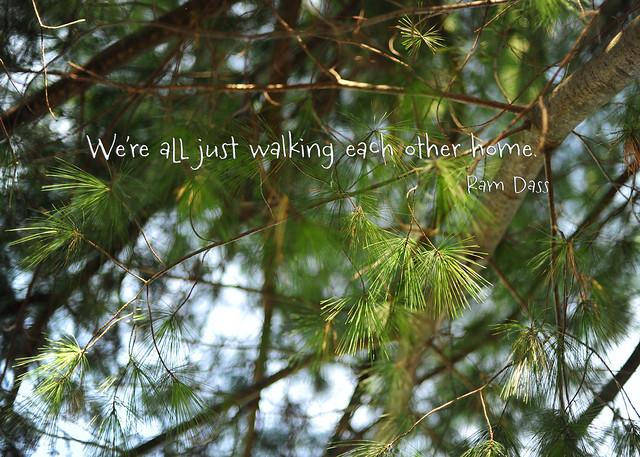 DSC_0471-quote