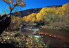 Jemez-River-in-the-Fall by Glen's Pics