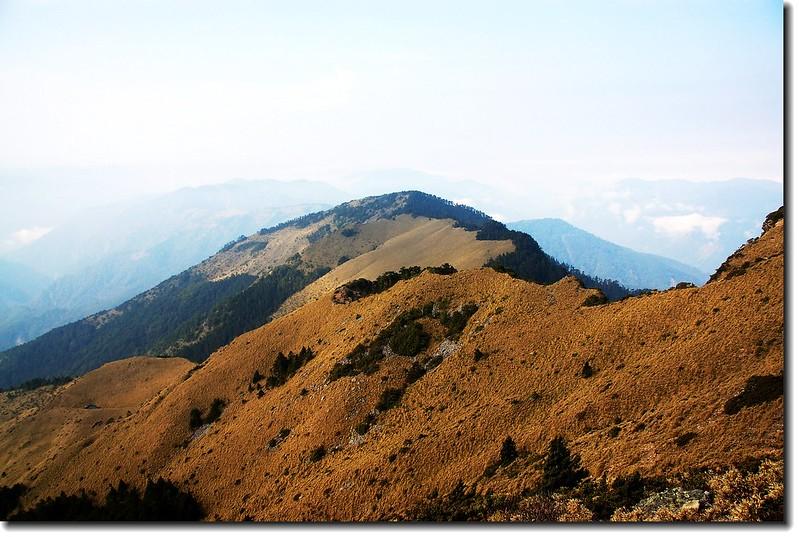 玉山南峰西稜東側草原坡 5