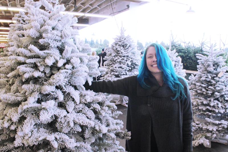 {december 1} our tree | original choice