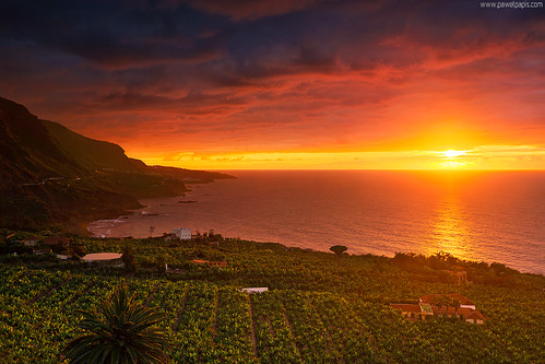 ocean light sunset sea cloud sun house seascape building tree fruit landscape island coast amazing spain warm view hill banana palm plantation tenerife canary casona drago losrealejos colonialstylehouse miradorsanpedro
