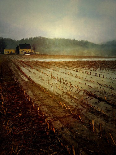 morning snow rain spring vermont mud cloudy fields stubble hartland iphone iphoneography uploaded:by=flickrmobile flickriosapp:filter=nofilter lemaxfarm