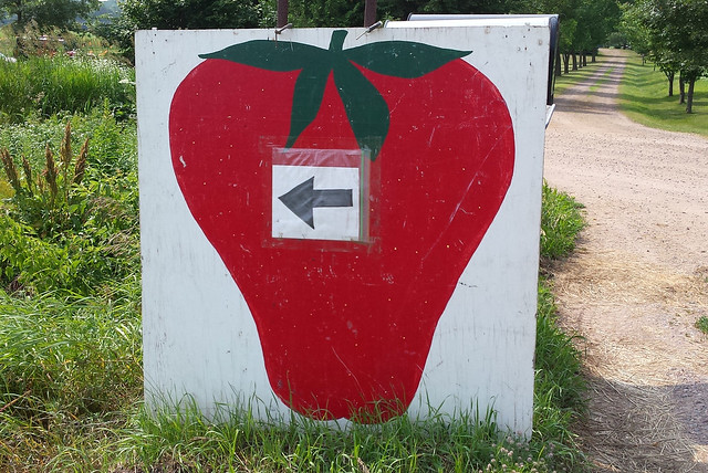 big sign of a painted strawberry with an arrow pointing left