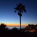SanDiego Sunset