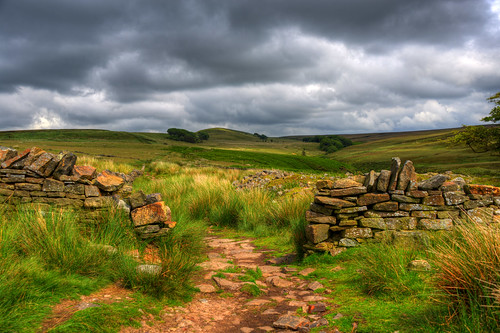 """paul great """"white tower"""" hill"""" """"winter """"christopher digitalcameraclub """"great photography"""" of """"chris """"pictures newman"""" moor"""" """"england"""" """"anglezarke """"lancashire"""" """"darwen coppice"""" """"anglezarke"""" """"zacerin"""" """"pendle"""