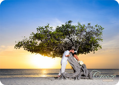 Aruba Wedding Photography