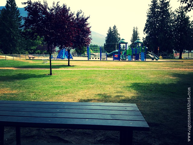 Queen Elizabeth Park playground, Revelstoke