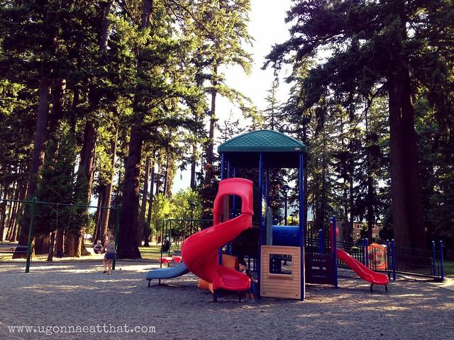 Lions Memorial Park playground, Hope B.C.