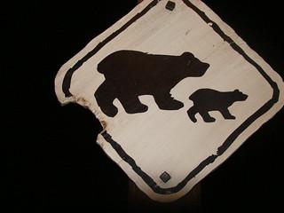 120 Berenbord bij Big Grizzly Mountain