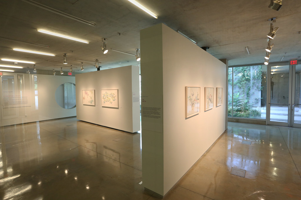 A view of Petra Kempf's exhibition Crossing Lines ll in Bibliowicz Family Gallery, Milstein Hall.