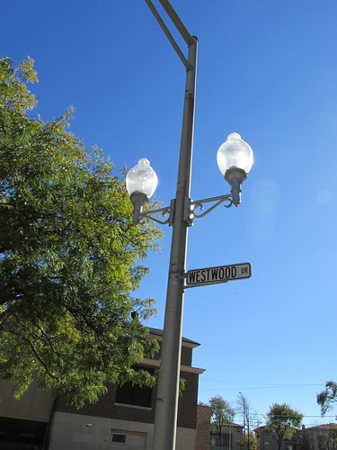 Twin glass street lamps on Westwood Drive.  Elmwood Park Illinois.  October 2013. by Eddie from Chicago