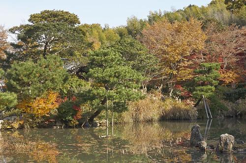 【写真】2013 紅葉 : 浄瑠璃寺/2019-08-22/IMGP3543