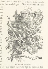 Image taken from page 383 of 'A Tramp Abroad, etc'