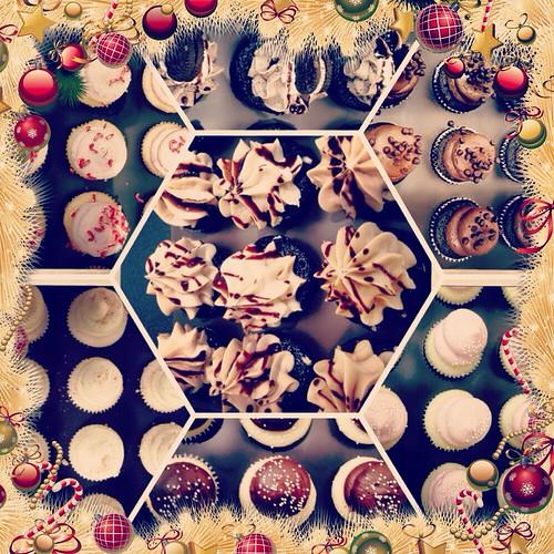 Cupcake (354/365) by elawgrrl