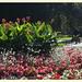 Arenbergpark 1030 Wien | 2013-09