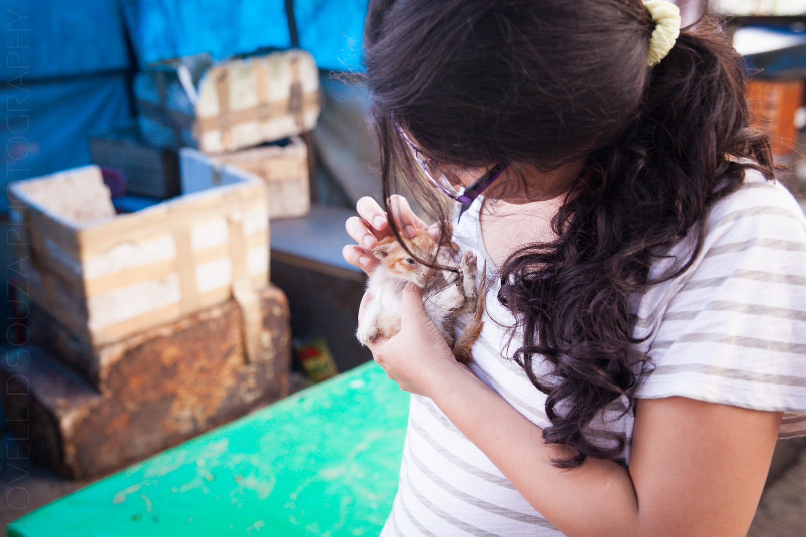 Priya and the kitten