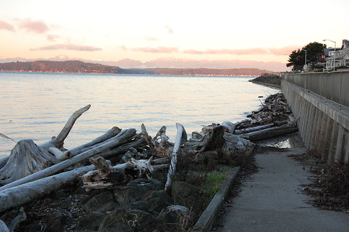 King Tide on 1/5/14 on Alki