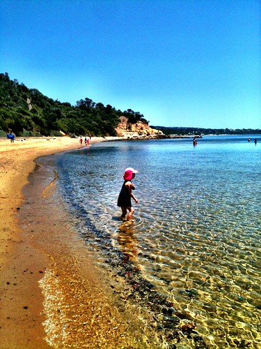 Small Z at Birdrock Beach