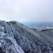 Roan High Bluff by Lonnie Crotts