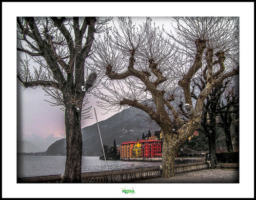 BELLANO - LAGO DI COMO by régisa