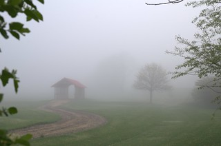 noer_bridge_fog_spring