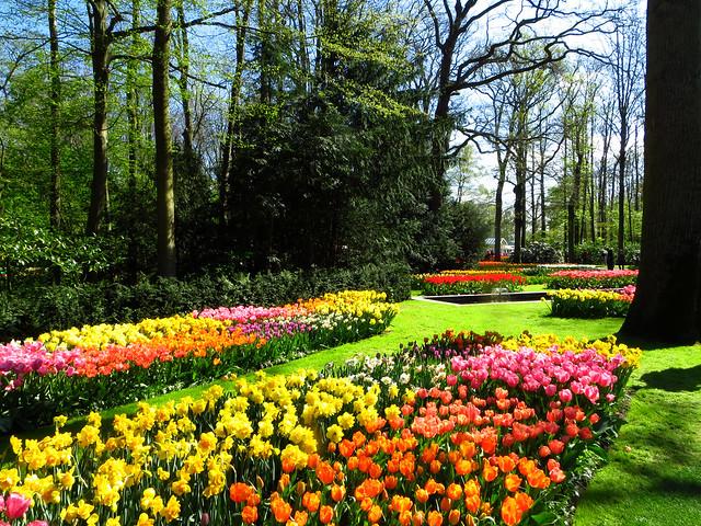 Keukenhof Gardens by CC user bfsminid on Flickr