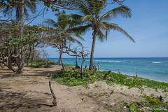 Playa Encuentro - Dominican Republic