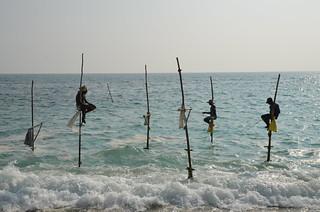 Stilt Fishermen near Unawatuna, Sri Lanka