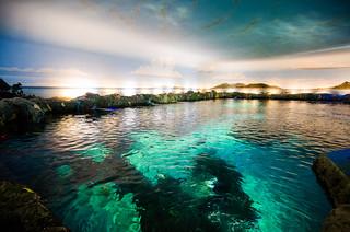 Image of Ripley's Aquarium of Canada. toronto ontario canada ripleysaquariumofcanada toronto2016 aquarium ripleysaquarium