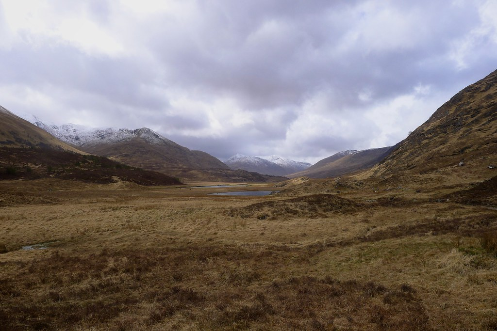 Showers pass through Glen Affric