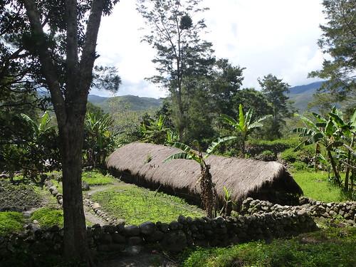 Papou13-Wamena sud-Sugokmo (95)