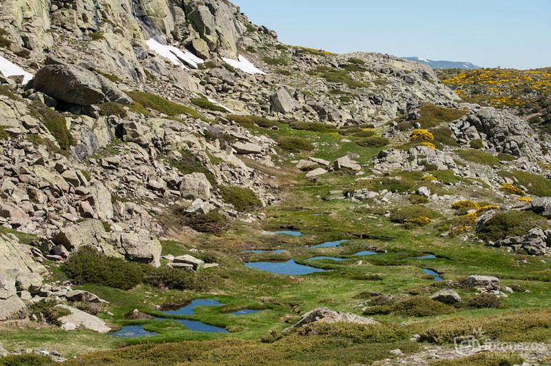 La Laguna de los Pájaros en Peñalara